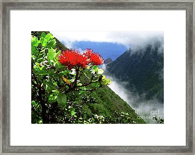 Peles Flower Framed Print by James Temple