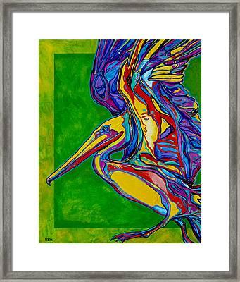 Pelican Framed Print by Derrick Higgins
