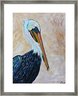Pelican Pointe Framed Print by Ella Kaye Dickey