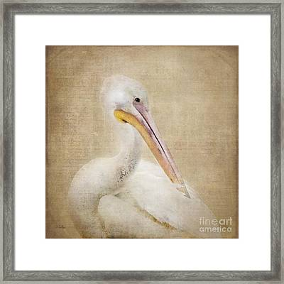 Pelican Primping Framed Print by Betty LaRue