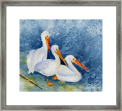 Pelicans At The Weir Framed Print by Pat Katz