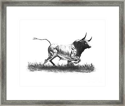 Pen And Ink Drawing Of Bull In Black And White Framed Print by Mario Perez