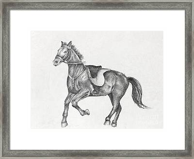 Pencil Drawing Of A Running Horse Framed Print by Kiril Stanchev