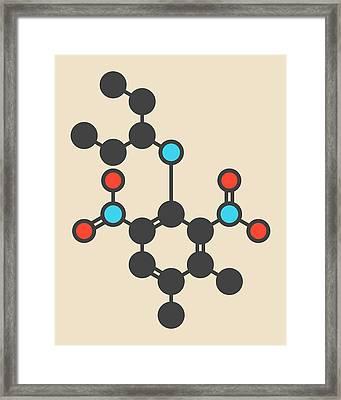Pendimethalin Herbicide Molecule Framed Print by Molekuul