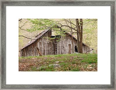 Pendleton County Barn Framed Print by Randy Bodkins