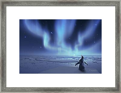 Penguin Dreams Framed Print by Cassiopeia Art