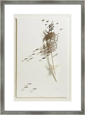 Penguin Swim Framed Print by Chris Maynard