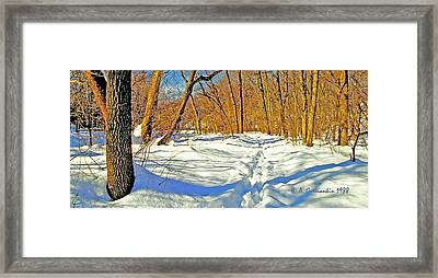 Framed Print featuring the photograph Pennsylvania Forest In Winter by A Gurmankin