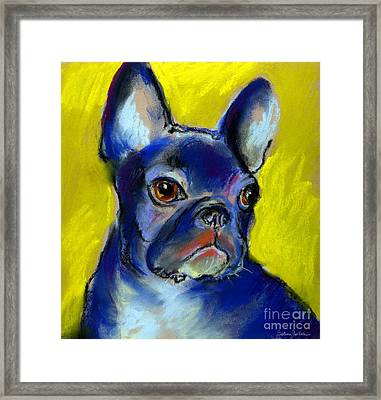 Pensive French Bulldog Portrait Framed Print by Svetlana Novikova