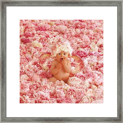 Peony Angel Framed Print by Anne Geddes
