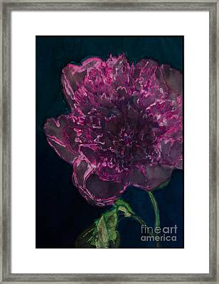 Peony On Black Framed Print by Kathy Goodson
