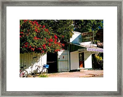 Pepes In Key West Florida Framed Print by Susanne Van Hulst