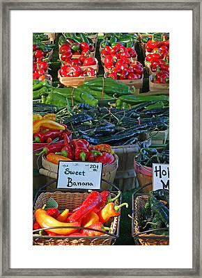 Pepper Alley Framed Print by Steph Maxson