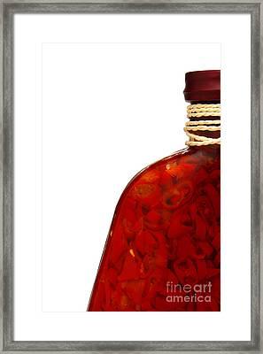 Pepper Skelter Framed Print by Olivier Le Queinec