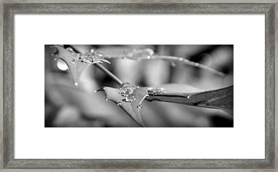 Perception Of Peace Framed Print by Florian Walsh