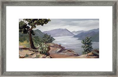 Perch Framed Print by Mary Giacomini