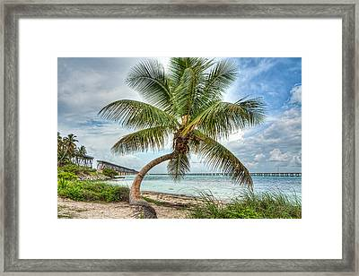 Perfect Day Framed Print by Gary Oliver