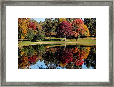 Perfect Day Framed Print by Rob Blair