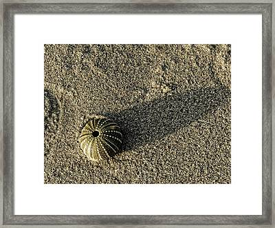 Perfection Framed Print by Leana De Villiers
