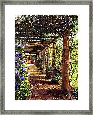 Pergola Walkway Framed Print by David Lloyd Glover