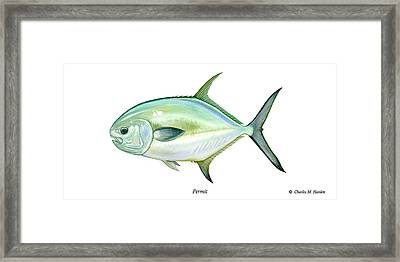 Permit Framed Print by Charles Harden