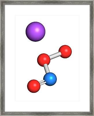 Peroxynitrite Reactive Nitrogen Species Framed Print by Molekuul
