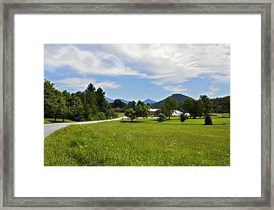Persimmon Valley Framed Print by Susan Leggett
