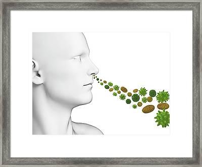 Person Breathing In Pollen Framed Print by Sebastian Kaulitzki