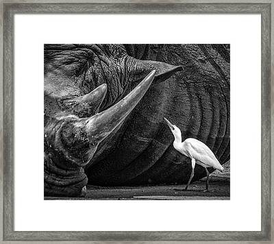 Personal Advisor Framed Print by Giovanni Casini