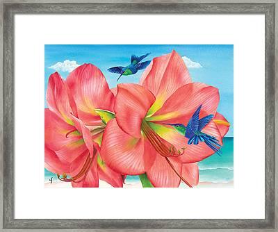 Petal Passion Framed Print by Carolyn Steele