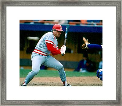 Pete Rose Taking Pitch Framed Print by Retro Images Archive