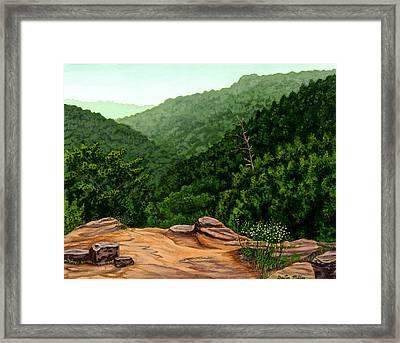 Petit Jean Mountains Framed Print by Dustin Miller