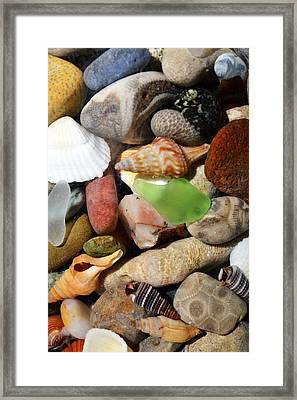 Petoskey Stones L Framed Print by Michelle Calkins