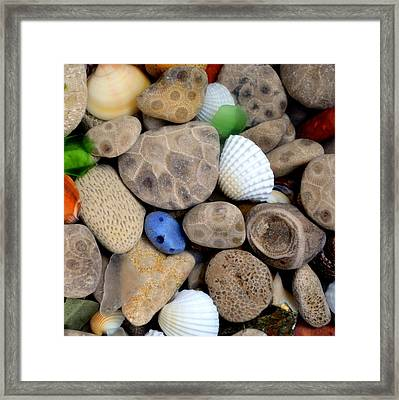 Petoskey Stones V Framed Print by Michelle Calkins