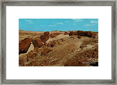 Petrified Forest National Park Framed Print by Ruth  Housley