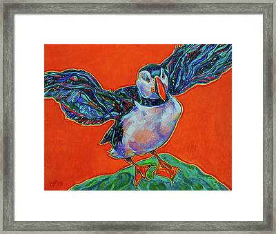 Petty Harbour Puffin Framed Print by Derrick Higgins