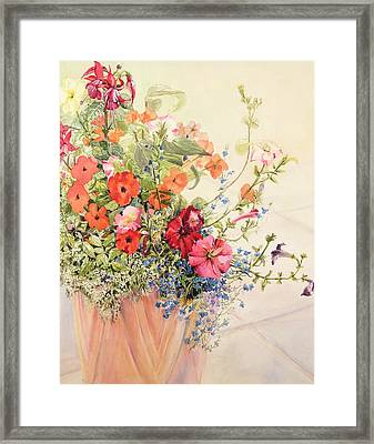 Petunias Lobelias Busy Lizzies And Fuschia In A Terracotta Pot Framed Print by Joan Thewsey