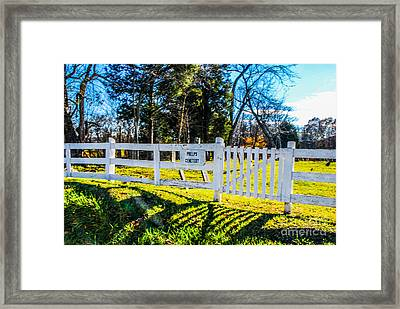 Phelps Cemetery  Framed Print by Mary Carol Story