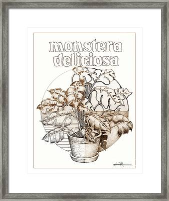 Philodendron 3 Framed Print by Jim Rehlin