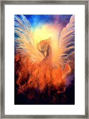 Phoenix Rising Framed Print by Marina Petro