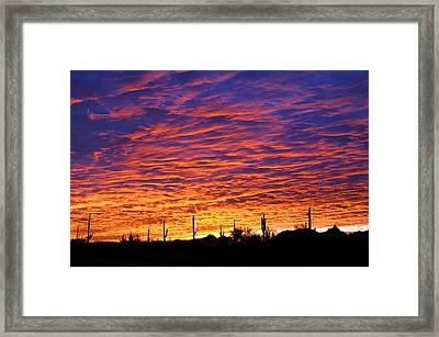 Phoenix Sunrise Framed Print by Jill Reger