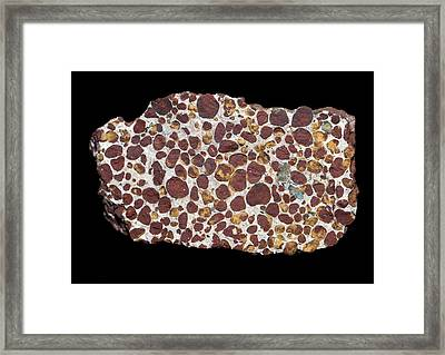 Phosphorite Framed Print by Science Photo Library