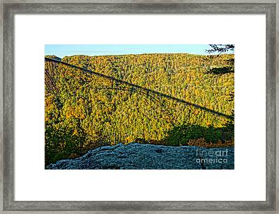Photographer's Perch Framed Print by Timothy Connard