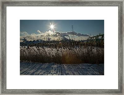 Phragmites Reeds And Steel Mill Framed Print by Jim West