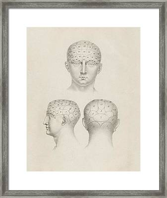 Phrenology Head Regions Framed Print by King's College London
