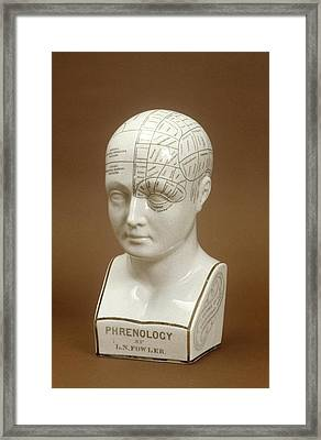 Phrenology Head Framed Print by Science Photo Library