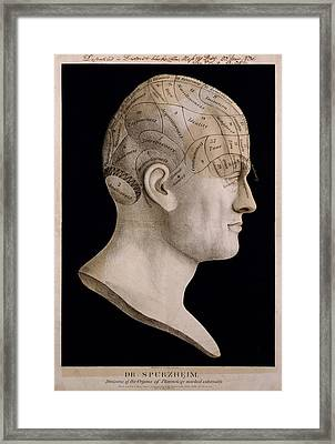 Phrenology Framed Print by Georgia Fowler