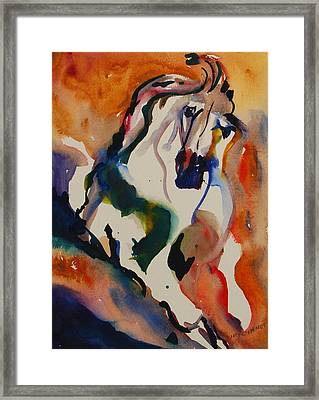 Picasso Framed Print by Nancy Gebhardt