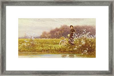 Picking Primroses Framed Print by Thomas James Lloyd