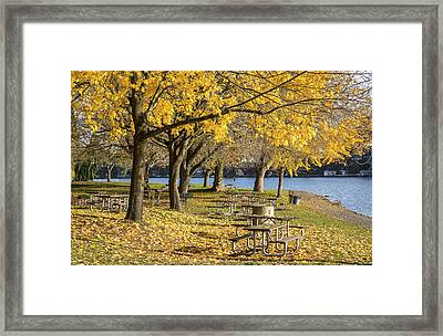 Picnic Area Blue Lake Park Oregon. Framed Print by Gino Rigucci